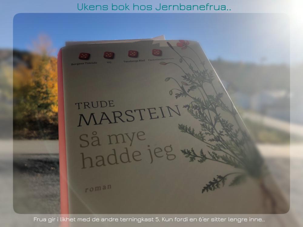 så mye hadde jeg, en roman av trude marstein