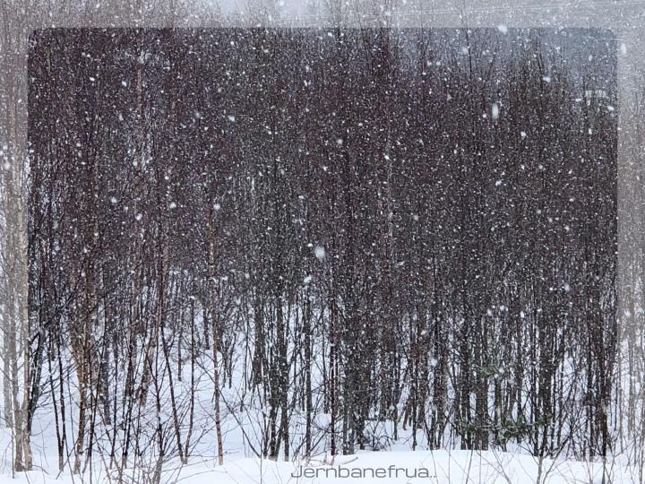 askeonsdag eller snødagen..