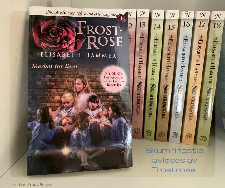 Serieromanen Frostrose avløser Skumringstid.