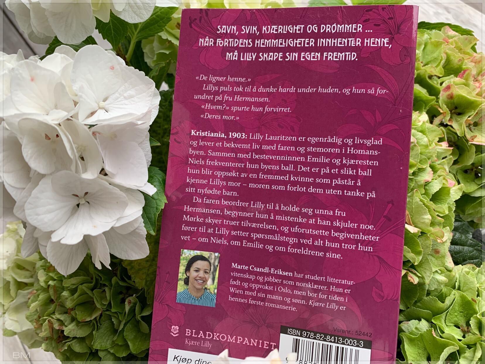 Serieromanen Kjære Lilly. Omtale av jernbanefrua.