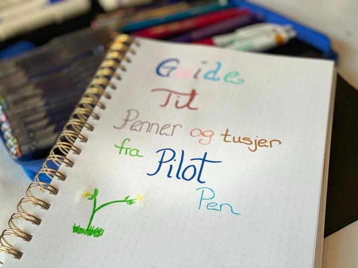 Anmeldelse av Penner og tusj penner du vil bruke i avtalebøker og kalenderefremover.