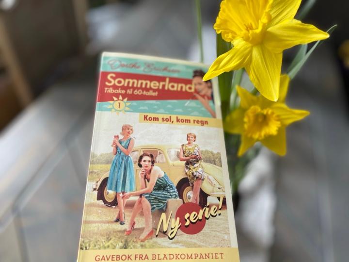 Bokanmeldelse. Sommerland 1, av DortheErichsen.